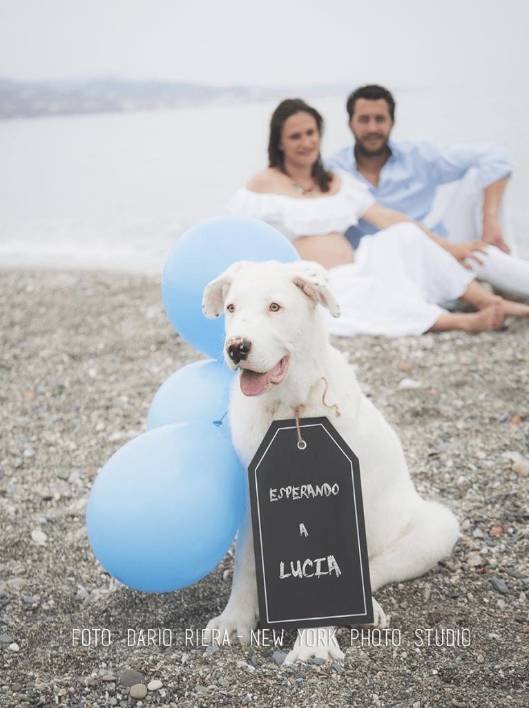 Lucia-3 copy